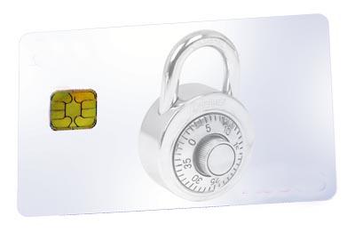 Microcontrolador seguro de interfaz dual
