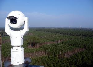 Vigilancia en los bosques de Czarne
