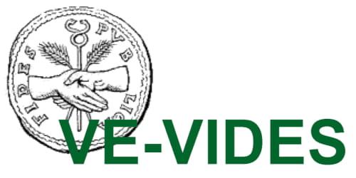 VE-VIDES, nuevo proyecto de investigación electrónica